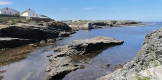 Galicia pesca